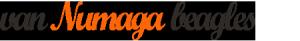 Logo van Numaga Beagles