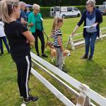 beagleclub_jonge_hondendag_2019_14